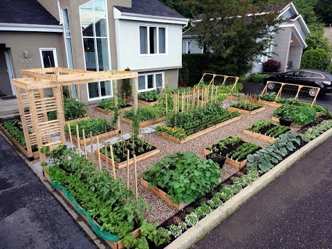 gardening ideas - raised garden beds designs ideas