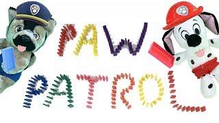 Juguetes paw patrol español: bebes aprender colores con domino.Video educativo de patrulla canina