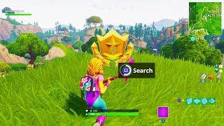 """Search where the Stone Heads are Looking"" Fortnite Week 6 Battle Pass Star Location!"