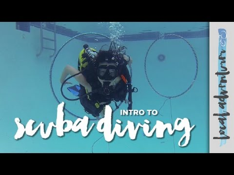 Learning To Scuba Dive