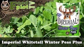 Whitetail Institute Winter Peas PLUS Food Plot Seed Blend