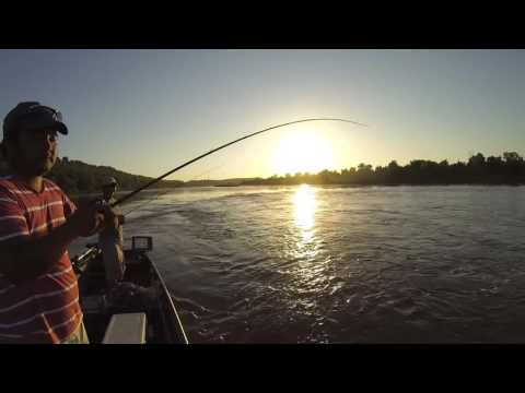 Hot Summer Fishing Arkansas River- OOW Outdoors