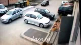 Парковка Кто за рулём ?