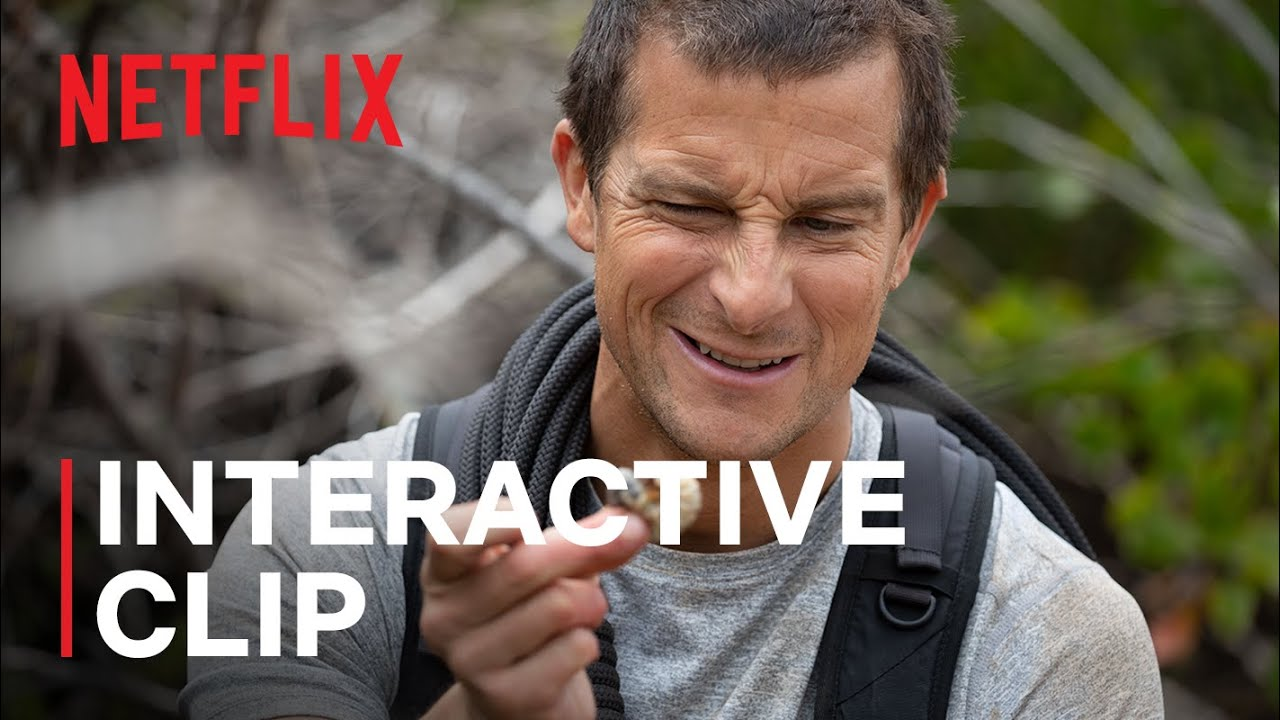 Animals on the Loose: A You vs. Wild Interactive Movie | Now Streaming | Netflix