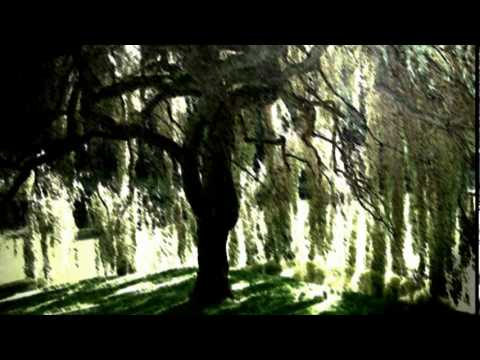 the Willow Song