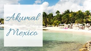 Akumal beach Mexico. Snorkeling with turtles and amazing beach.