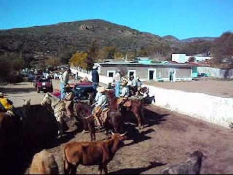 Mimbres Valparaiso Zac