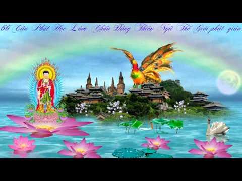66 Câu Phật Học Làm Chấn Động Thiền Ngữ Thế Giới-phật giáo