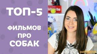 Мой ТОП-5 любимых фильмов про СОБАК