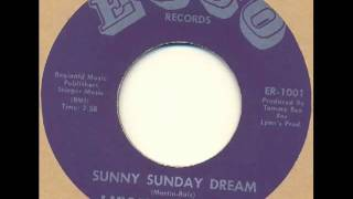 Lincoln St Exit - Sunny Sunday dream (garage psych)