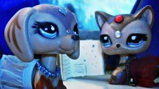 Littlest Pet Shop:꧁ℑɲ˅ɨţɨɲǥ ℰ˅ɨℓ꧂(Episode #23 Legend and stars)