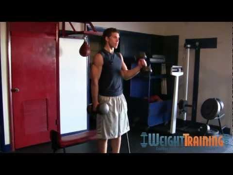 Alternating Hammer Curl - How to do Alternating Dumbbell Hammer Curls