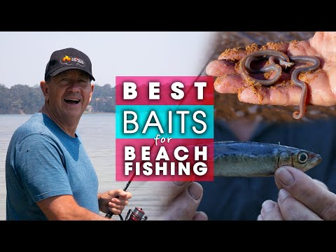AMAZING BAITS For Beach Fishing ( COMPLETE GUIDE ) How To Put Them On Your Hook!