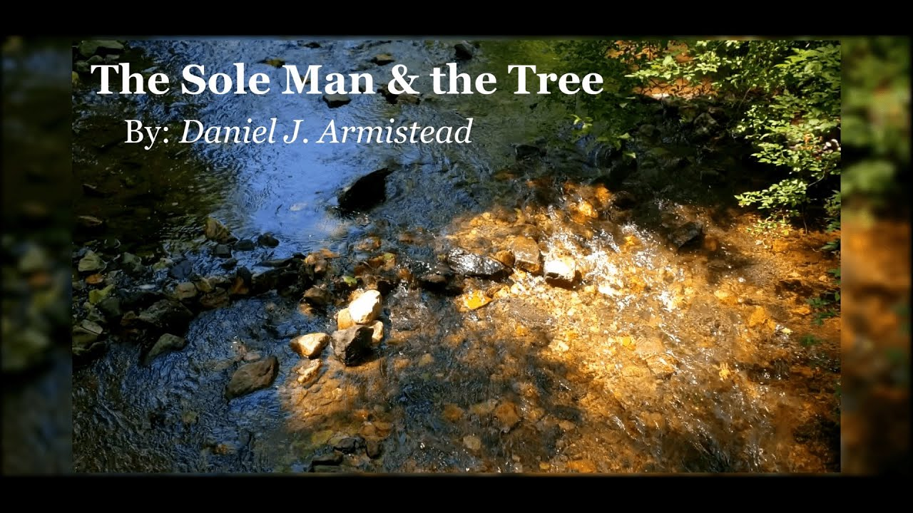 The Sole Man & the Tree: Music & Film Composition for Chamber Orchestra