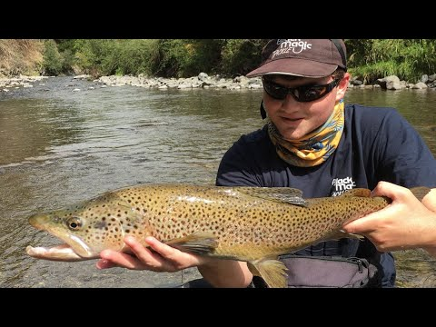 Fly Fishing For BIG Browns On The Mohaka