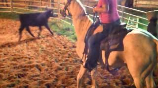 Mindi riding gray horse