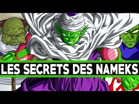 LES SECRETS DES NAMEKS !