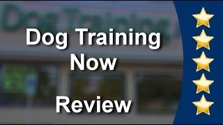 Dog Training Now Schaumburg          Impressive           Five Star Review by Kelly L.