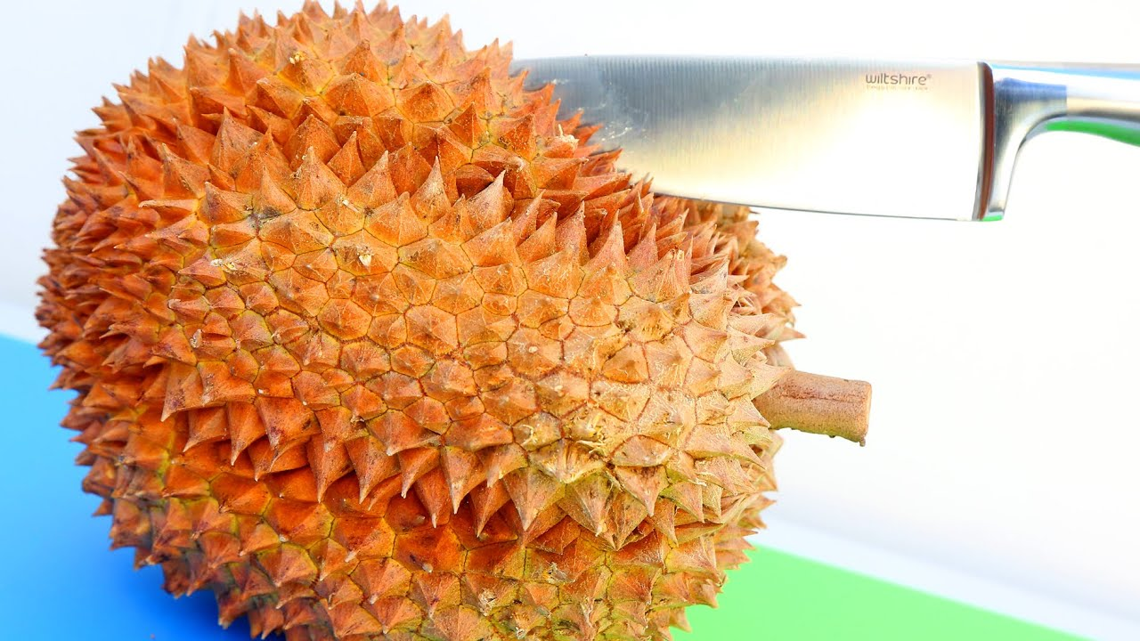 "durian world smelliest fruit ever An american couple known online as the b family tried to eat a whole durian fruit, also known as the ""world's smelliest fruit,"" but had no idea that they got one that was already rotten the ."