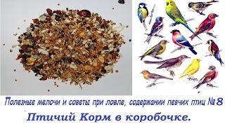 Полезные мелочи и советы при ловле, содержании певчих птиц №8- Птичий Корм в коробочке.