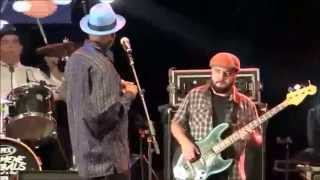 Harmonica Hinds & Jelly Roll Boys with Solon Fishbone - Messin with the kid