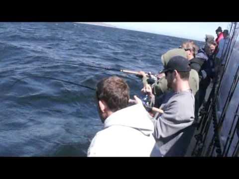 Mirage Sportfishing - Channel Islands Sportfishing - Oxnard, CA