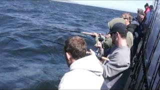 Mirage Sportfishing - Channel Islands Sportfishing - Oxnard, CA