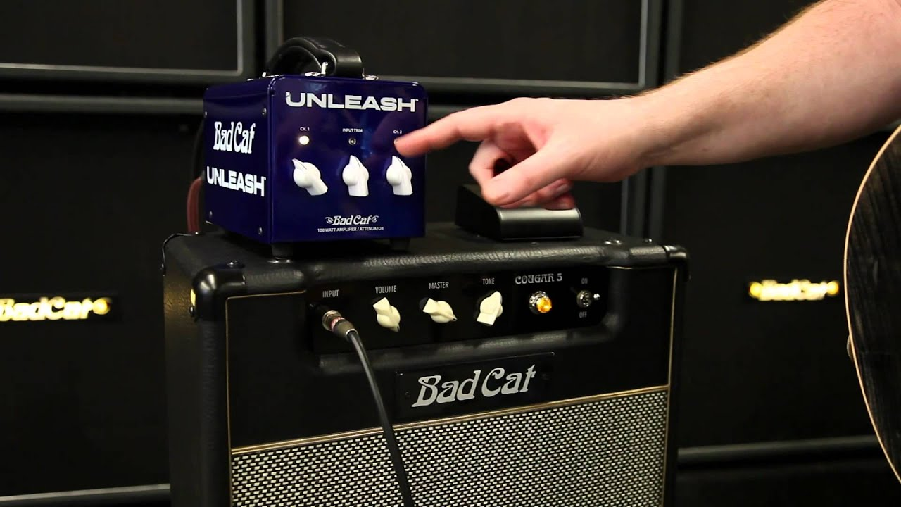 Bad Cat Amps Unleash Demo