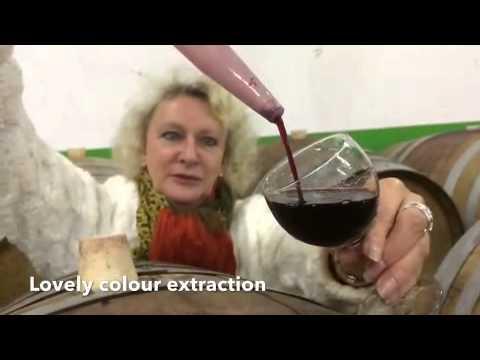 Seal Breeze Wines, Lutzville - South Africa