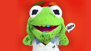 Kermit Raps 6Ix9Ine Stoopid.mp3