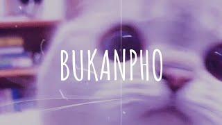 Vietsub Bukanpho Dj Desa Remix Tik Tok MP3