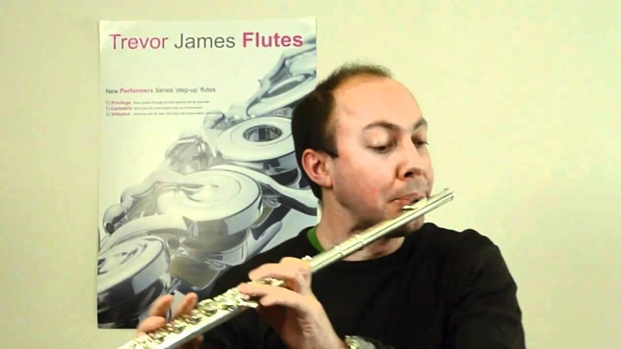 Award winning TJ10x flute (UK Music Industry Association Award)