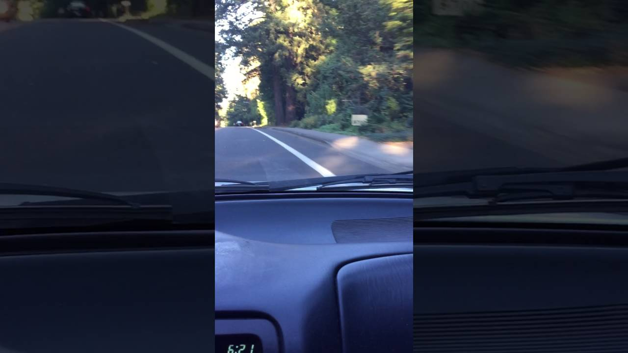 Engine chirping sound only while accelerating  Any thoughts