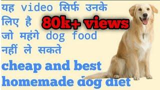 मंहगे dog foods की जगह क्या दे। Home-made सस्ती dog diet। Video देखें।Full detail। #ajaypunjab