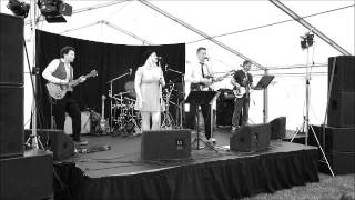 Poke playing Talking Heads' Life During Wartime at the Needingworth Festival