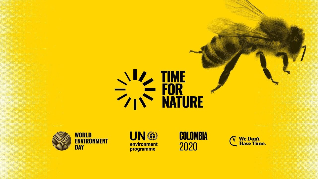 World Environment Day 2020 - It's time for Nature!