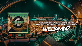 Mike Williams & Mesto vs. Backstreet Boys - Wait Another Day vs. I Want It That Way (WeDamnz Mashup) dinle ve mp3 indir