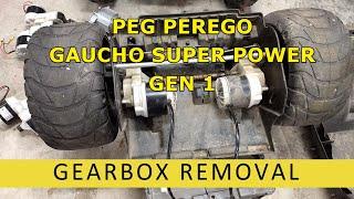 Motor and Gearmotor for Peg Perego Gator 24 Volt 6 x 4