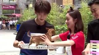 《72 tầng kỳ lâu》Triệu Lệ Dĩnh, Ngưu Tuấn Phong bắt chó- Tập 11