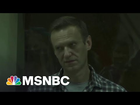 Navalny's Friend: 'We Are Watching A Person Dying In Front Of Our Eyes' | The Last Word | MSNBC