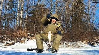 Тайга лечит Горная рыбалка зимой