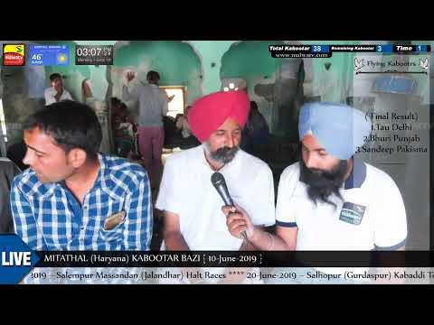 INTERVIEW 🔴 DC KARTARPUR🔴  MITATHAL (Haryana) KABOOTAR BAZI [10th-June-2019]