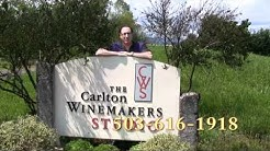 A Great Oregon Wine Tour Spring Intro
