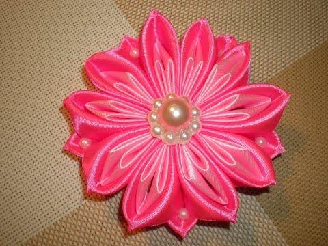 Маргарита, цветок Фото