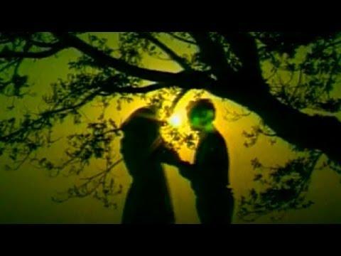 Love Songs - Yaar Ke Bina Kya Hai Jeena | Ae Dil Deewane | Mohd. Niyaz