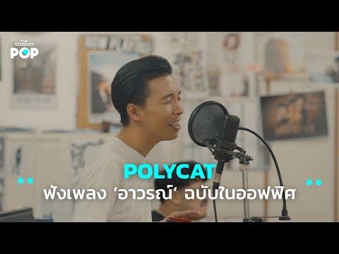 POLYCAT ฟังเพลงอาวรณ์ (I Want You) ฉบับในออฟฟิศ