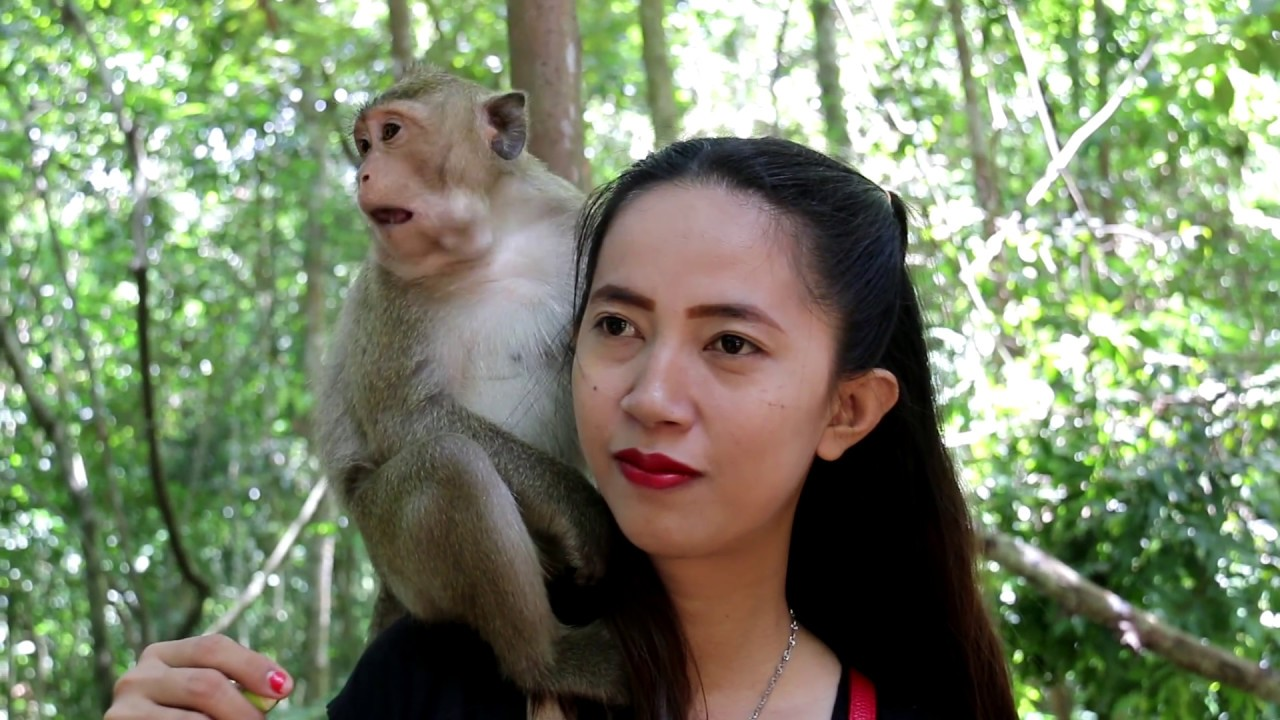 Smart Girl Play With Cute Monkey In Wild Angkor - Monkeys -7288