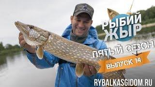 Рибалка в Білорусі. Річка Прип'ять. Риб'ячий жир 5 сезон випуск 14.
