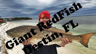 Giant Redfish Destin Florida bank fishing VLOG#15