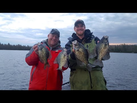 Sight Fishing Crappies, Northern Wisconsin - Larry Smith Outdoors